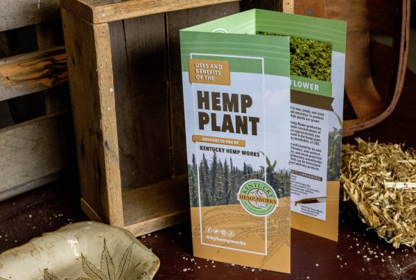 Hemp Plant Brochure