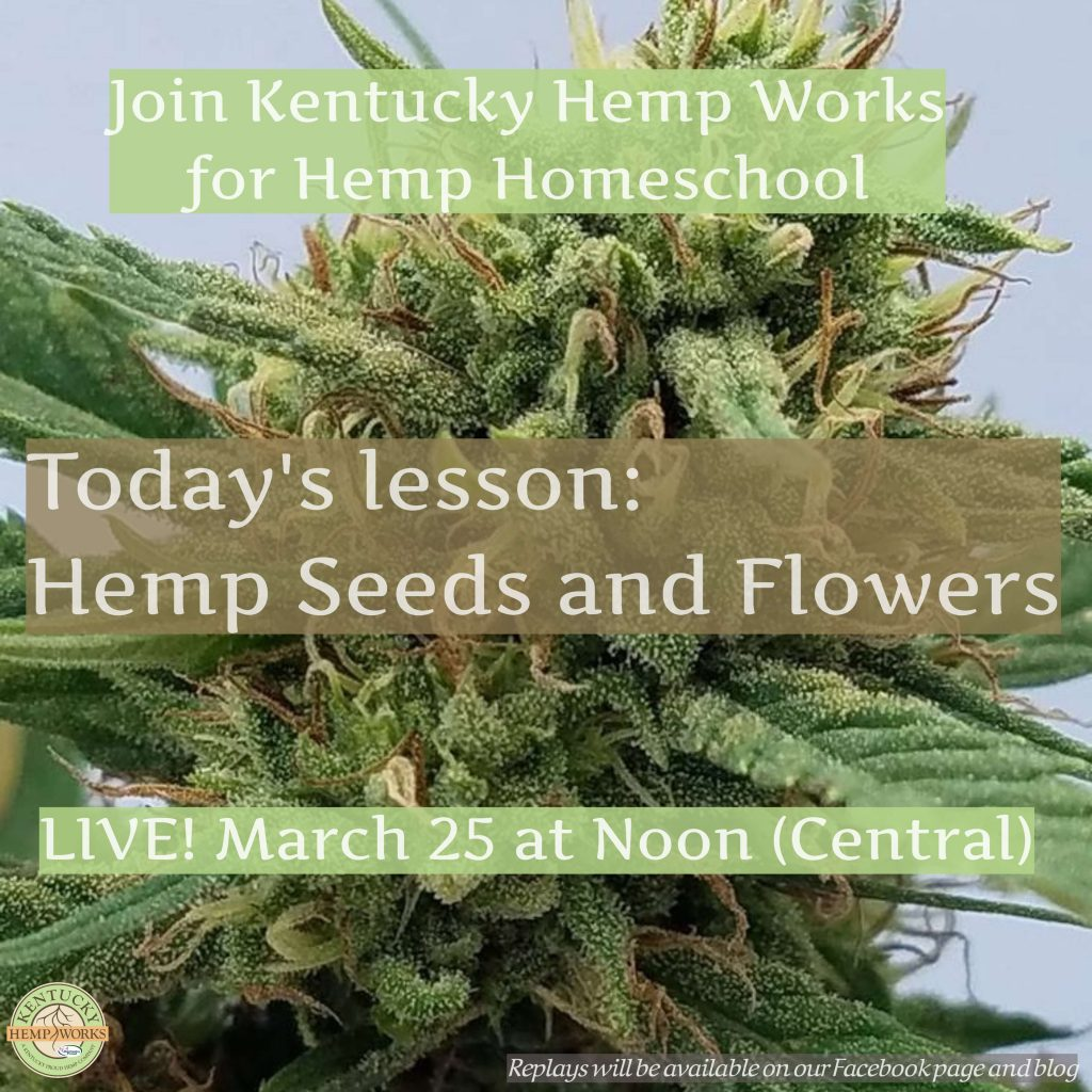 Hemp Homeschool - Hemp Seeds and Flowers